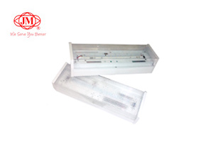 Bulkhead LED Emergency Light Malaysia